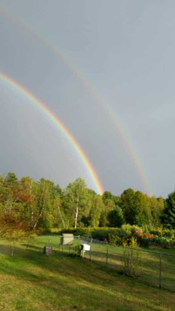 divine inspiration comes with double rainbow